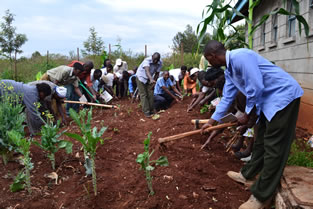 Leaders of Gitegi and Nganyuthe in a demonstration plot, preparing a kitchen garden at Caritas Nyeri.