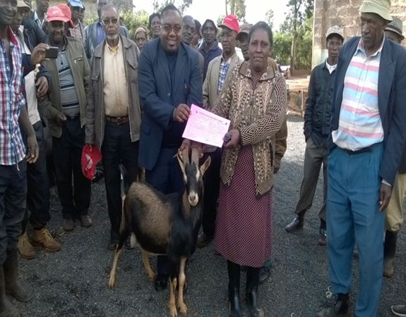 140 dairy goats were distributed to farmers