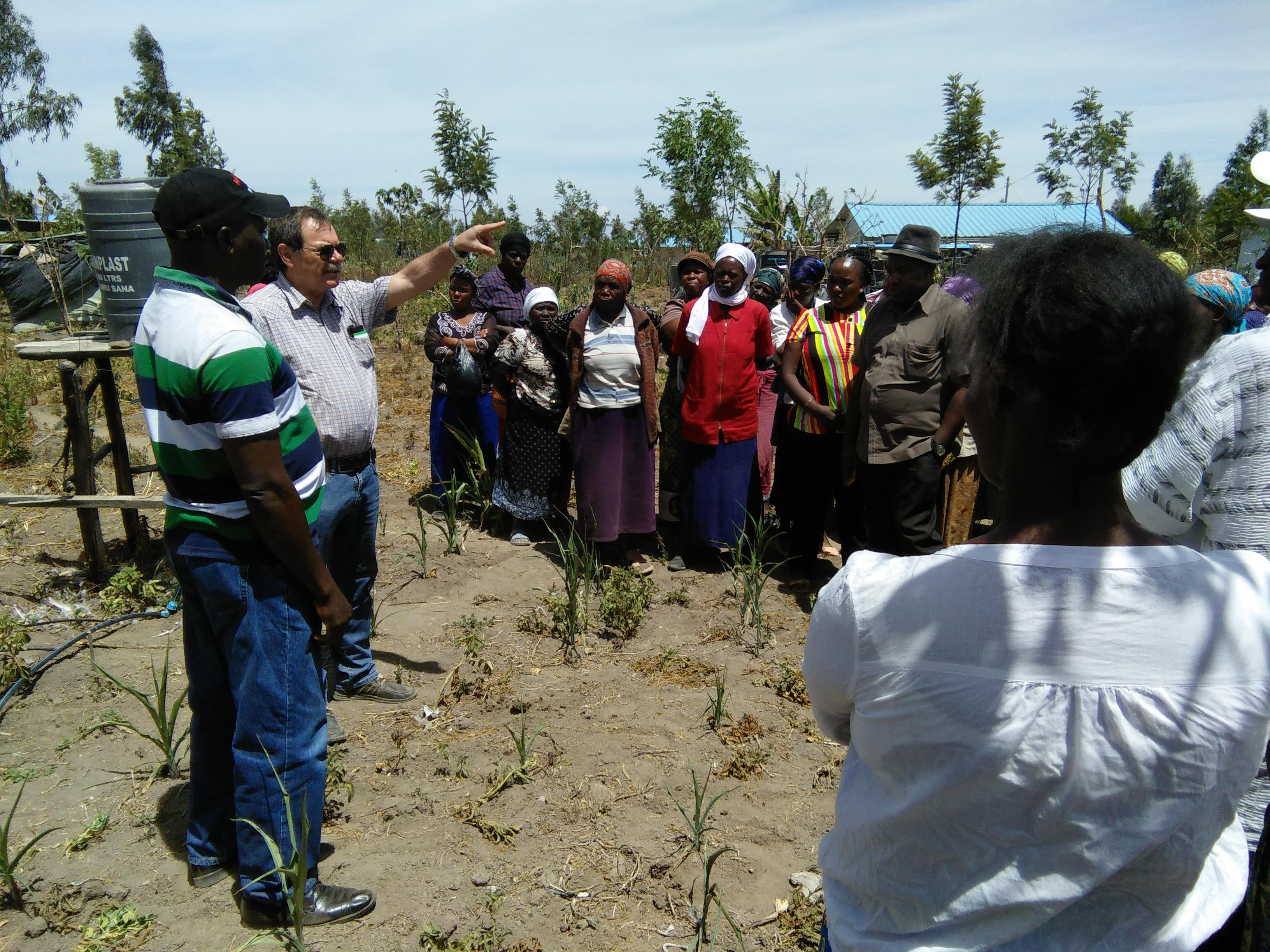 A group of project beneficiaries of the Shalom Canaan Diversification project (SCDP) engage with the Director and the Livelihoods project team accompanying Mr. Fritz of Caritas Germany during an experience sharing session at one of the homesteads outdoor plots put under kitchen gardening.