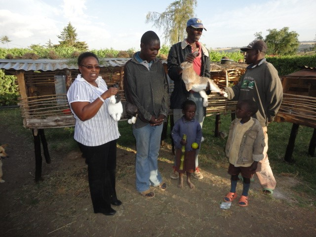 Some mentally ill persons supported with an income Generating activity.  (Rabbit keeping project)